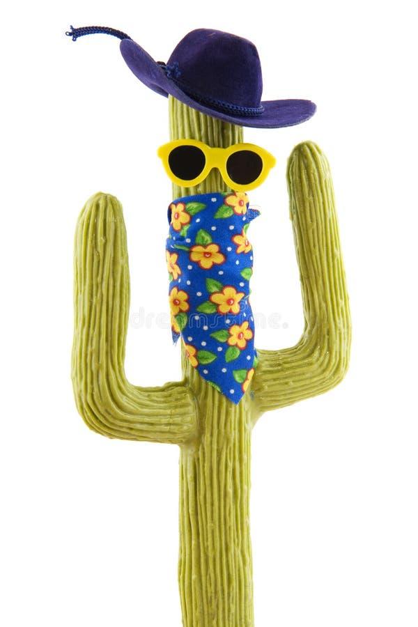 Cactus occidental sauvage drôle images libres de droits