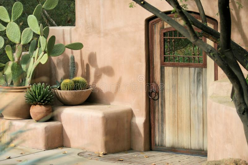 Cactus and Plant Still Life in Front of Adobe Wall royalty free stock photos