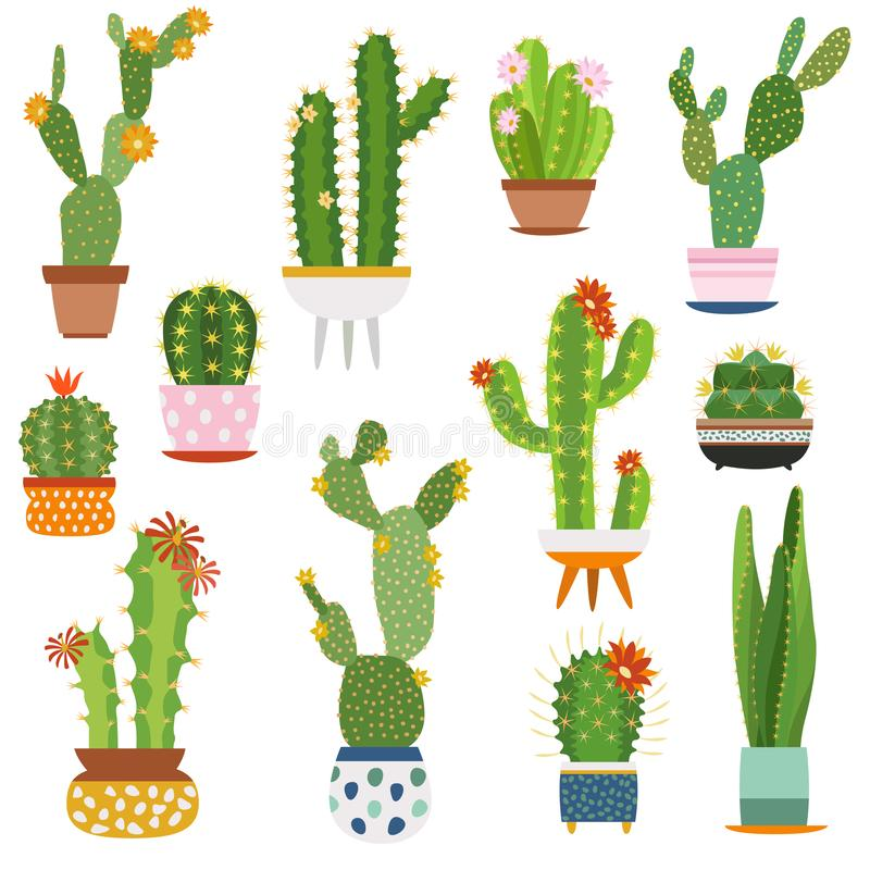 Free Cactus Pots. Home Plants Cacti Flowers In Ceramic Pot Succulent Plant, Cactuses With Prickles Flora Garden Royalty Free Stock Image - 139138826