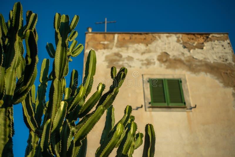 Cactus que crece delante de una casa española tradicional rústica del estilo con los obturadores fotografía de archivo libre de regalías