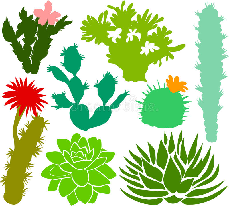 Free Cactus Set 02 Stock Images - 15220774