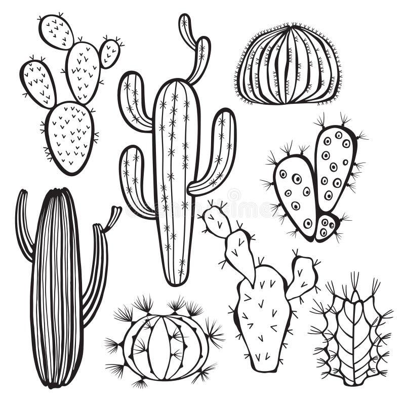 Cactus su priorità bassa bianca Vettore, ill disegnato a mano dell'insieme illustrazione di stock