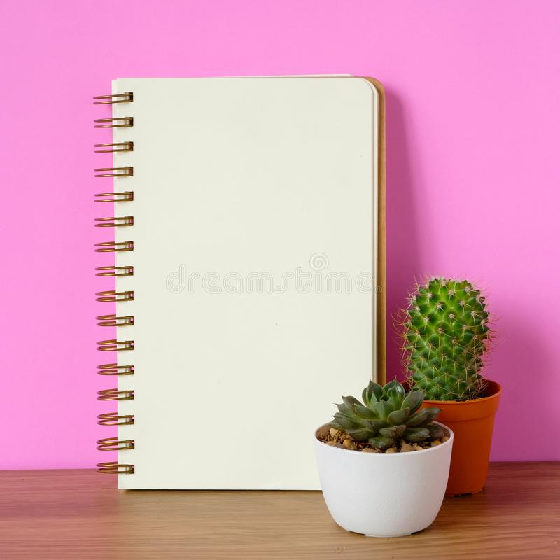 Free Cactus, Succulent Plants And Blank Notebook Paper On Wooden Table And Pink Background, Desert Houseplant Trendy Design Background Stock Images - 114142254
