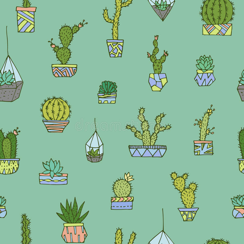 Cactus, succulents fijados libre illustration