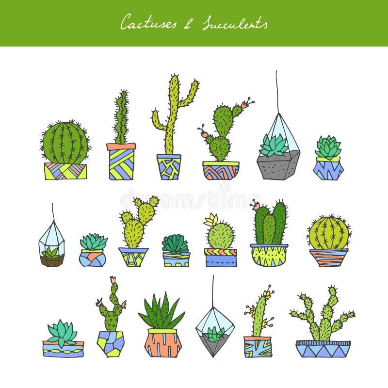 Cactus, succulents fijados stock de ilustración