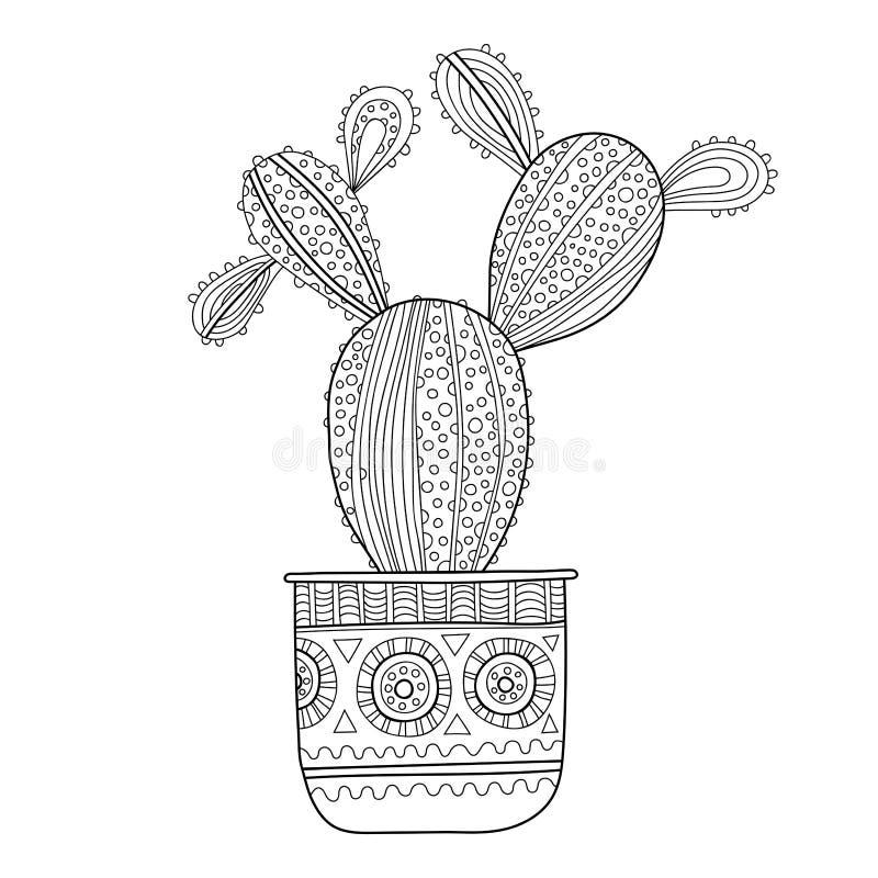 Cactus Suculento Ejemplo Blanco Y Negro Para Los Libros De