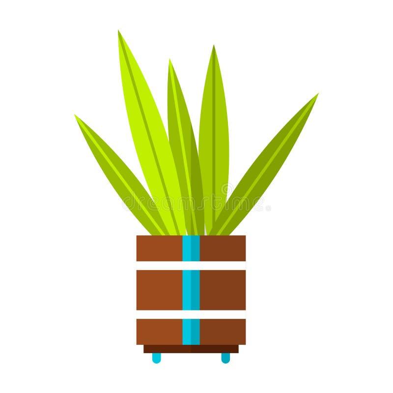 Cactus, suculento Icono plano del color, ejemplo de la planta en conserva aislado en el fondo blanco Objeto para el diseño stock de ilustración