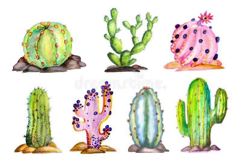 Cactus sur le fond blanc sur des pierres handmade illustration stock