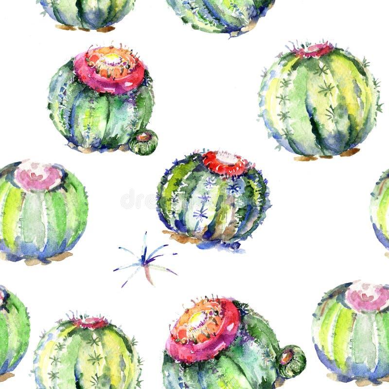 Cactus verde del Wildflower Fiore botanico floreale Modello senza cuciture del fondo illustrazione vettoriale