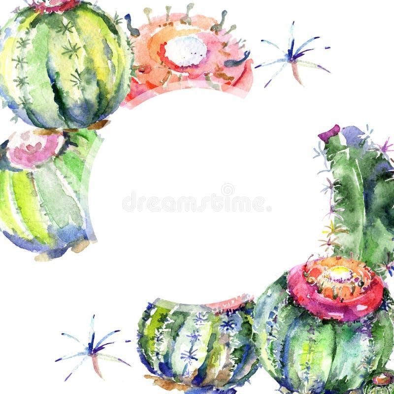 Cactus verde del Wildflower Fiore botanico floreale Quadrato dell'ornamento del confine della pagina illustrazione vettoriale