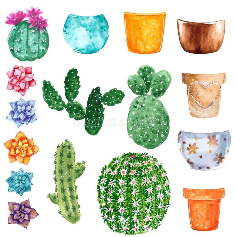 Cactus verdes con el rosa, naranja, flores y potes de arcilla, ejemplo exhausto de la púrpura y de la turquesa de la acuarela de  libre illustration
