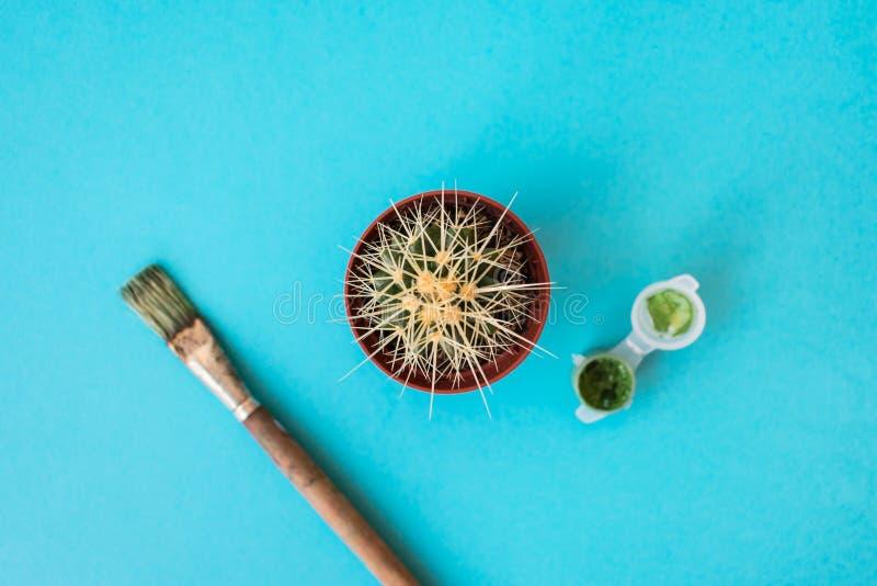 Cactus, verfborstel en een kleine emmer van groene verf op een blauwe achtergrond royalty-vrije stock afbeelding