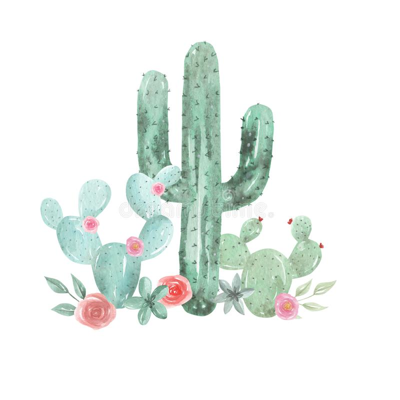 Free Cactus Watercolor Pink Floral Red Succulents Flowers Cacti Stock Photos - 129949753