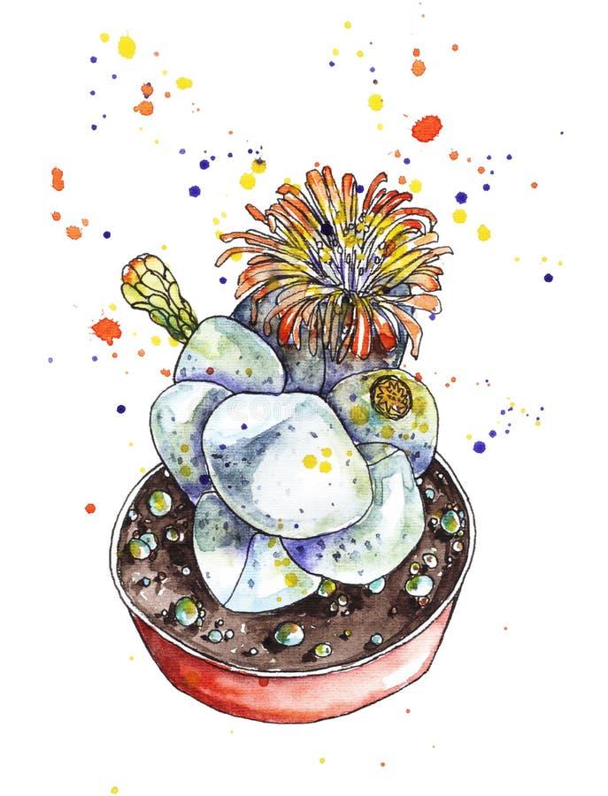 Cactus in waterverf royalty-vrije illustratie