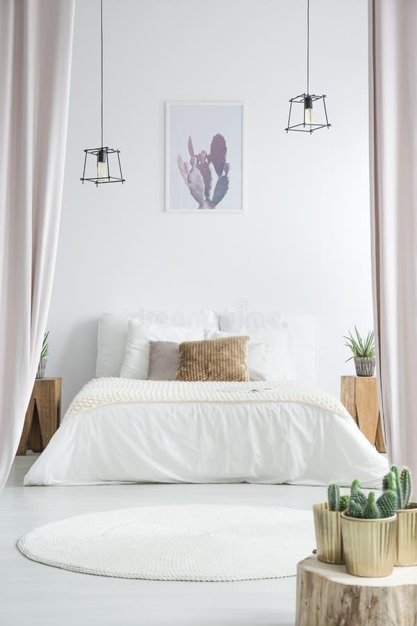 Cactus in witte slaapkamer stock foto's
