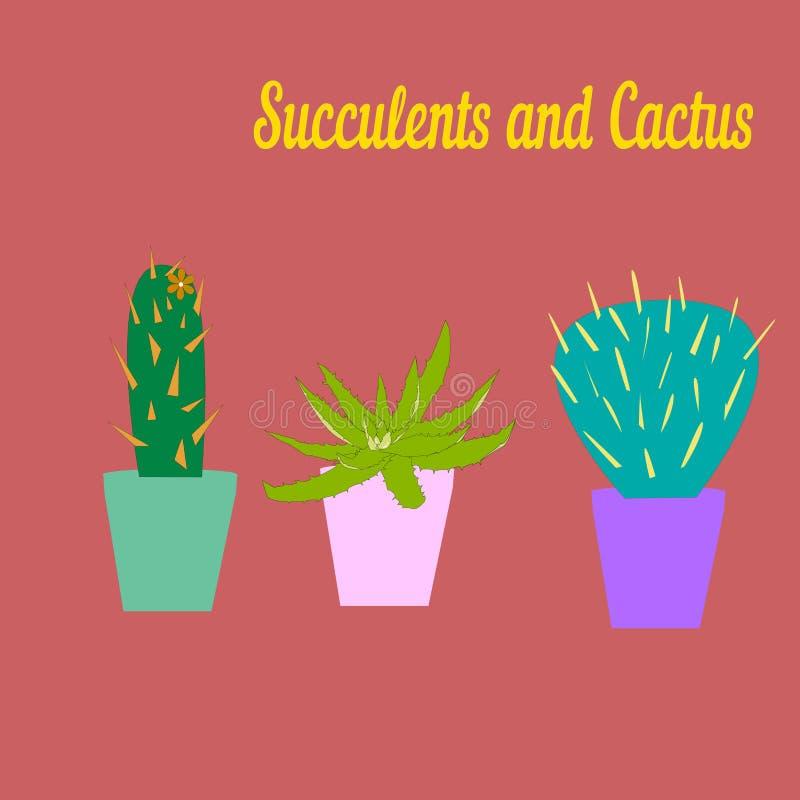 Cactus y drenaje suculento del vector ilustración del vector