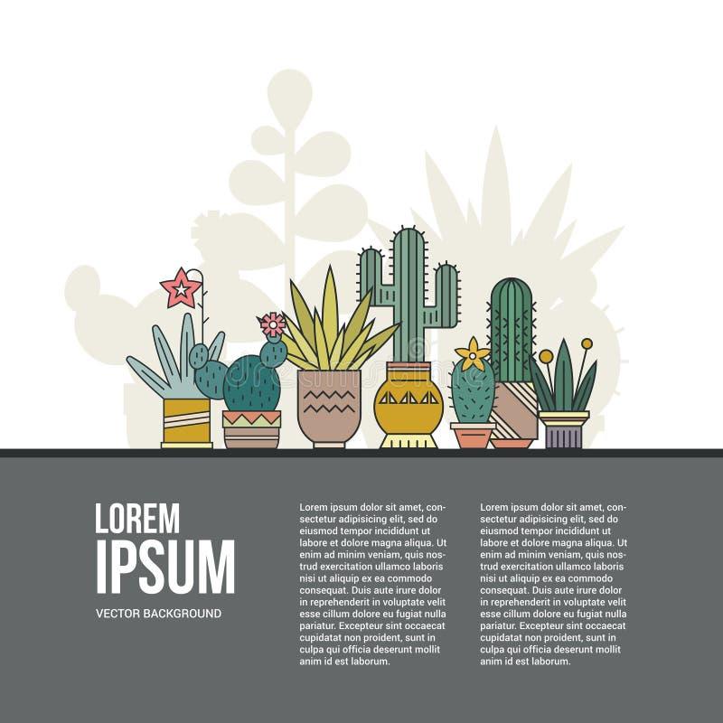 Cactusconcept royalty-vrije illustratie