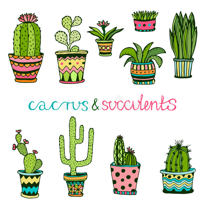 Cactuse and succulent hand drawn set. Doodle florals in pots. Vector colorful cute interior plants stock illustration