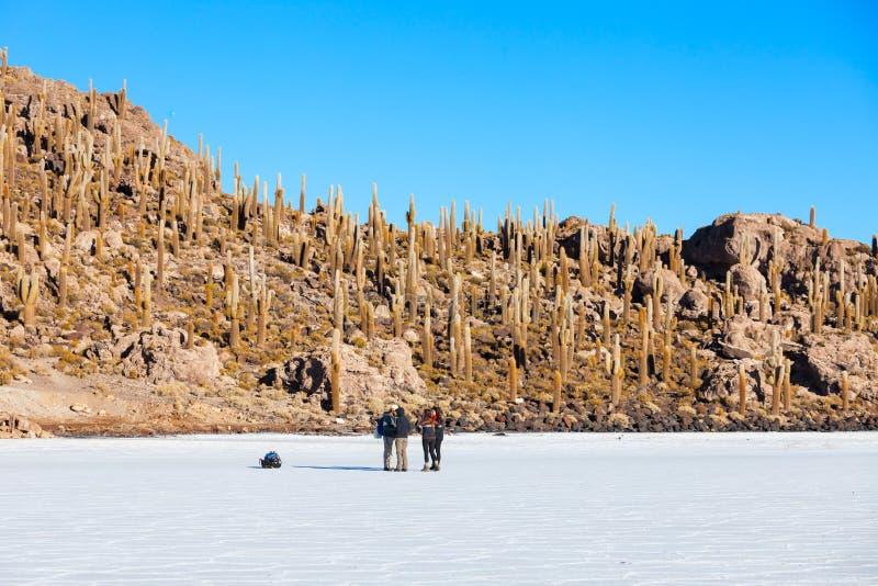 Cactuseiland, Uyuni stock afbeeldingen