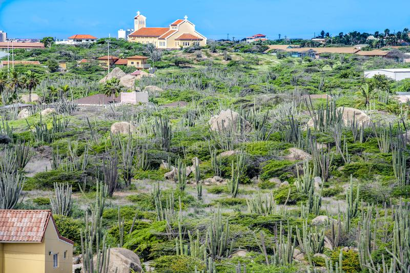 Landscape with cacti and brush plants, Aruba. Arikok National Park - Cactuses on Aruba, island in the Caribbean Sea, Lesser Antilles, constituent country of the royalty free stock photo