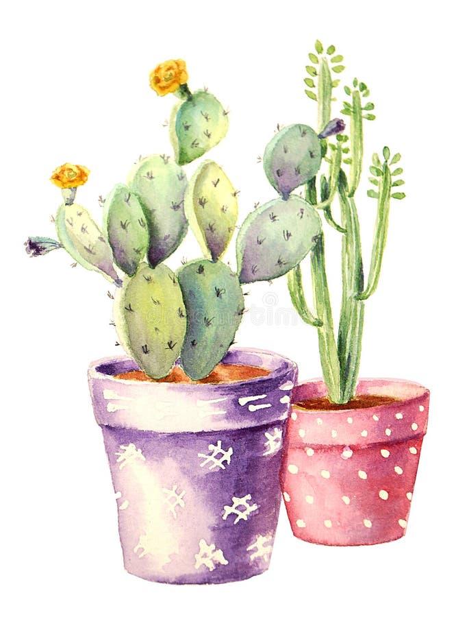 Cactussen en succulents stock illustratie