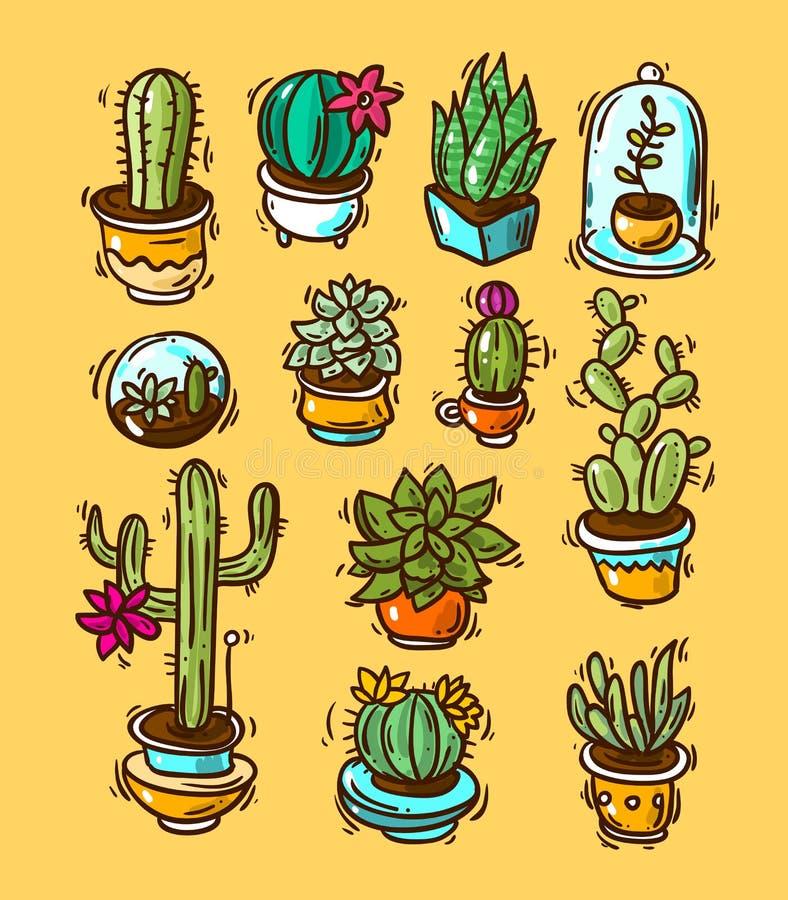 Cactussen en succulents vector illustratie