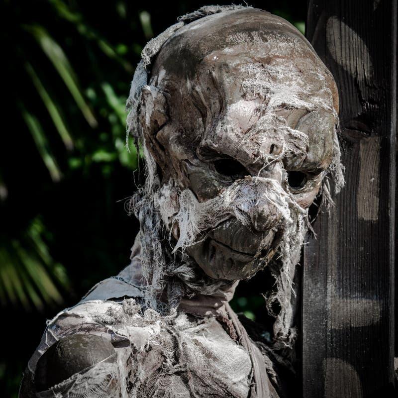 Cadavre momifié enveloppé dans un bandage utilisé vers le bas images libres de droits