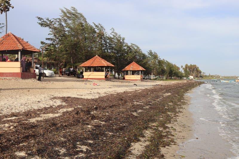 Caddy Beach Jaffana, Sri lanka royaltyfri fotografi