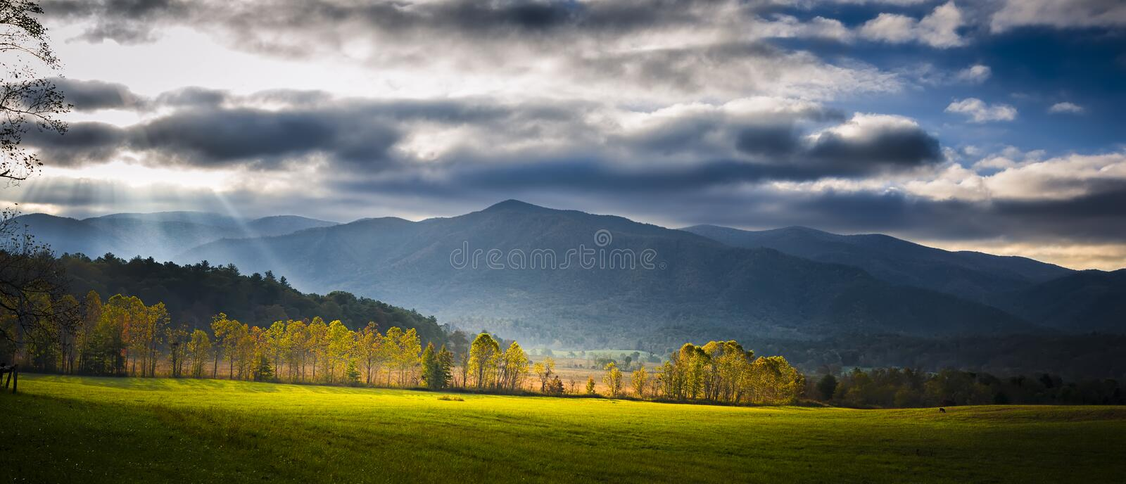 Cade's Cove Morning Panorama royalty free stock photo