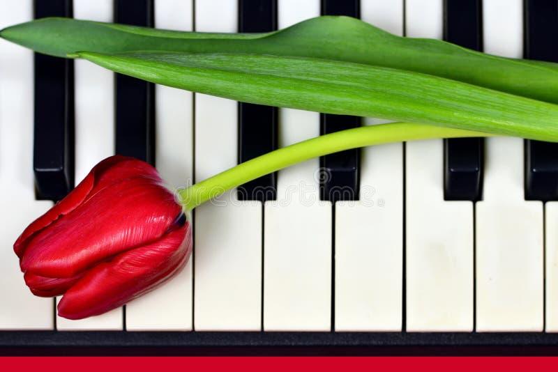 Cadeau de jour de mères, fleur de jour de mères sur le clavier de piano image stock
