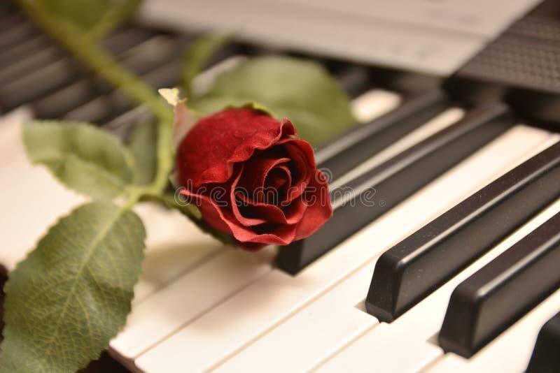Cadeau rouge d'amour de passion de coeur de festivité d'amants de Saint-Valentin de St de festin photos libres de droits