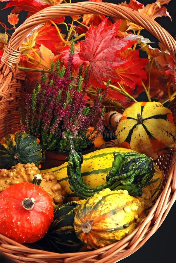 Cadeaux d'automne. images stock