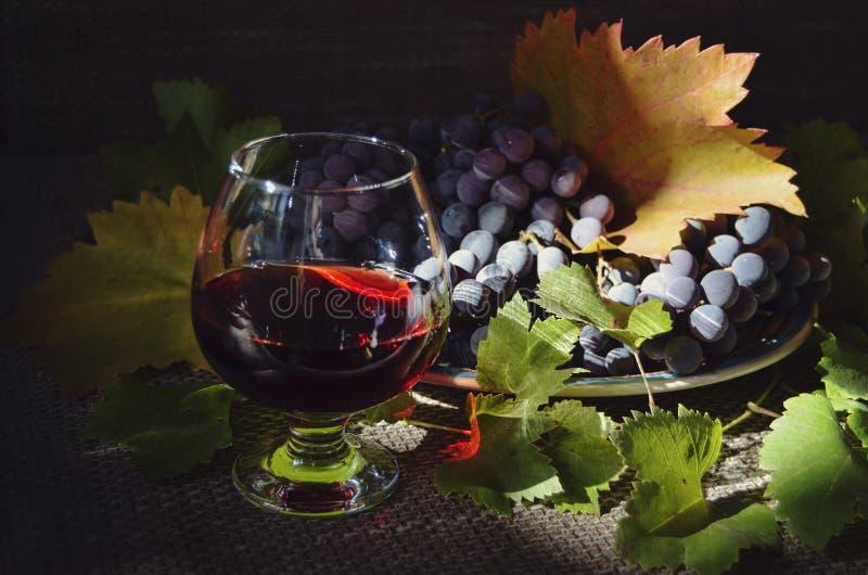 """Cadeaux de Dionysus """" Durée toujours avec des raisins illustration de vecteur"""