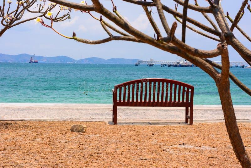 A cadeira com a árvore pelo oceano fotografia de stock