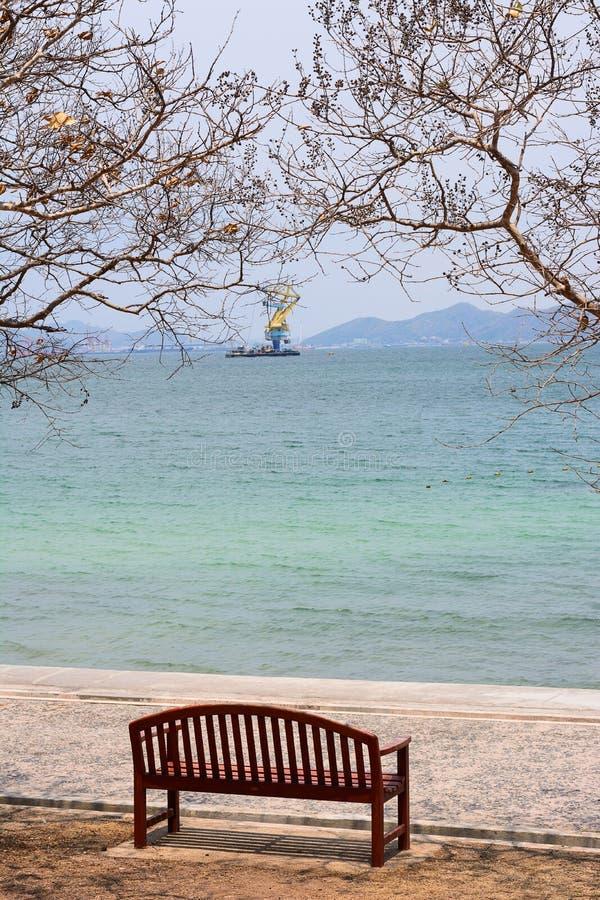 A cadeira com a árvore pelo oceano fotos de stock
