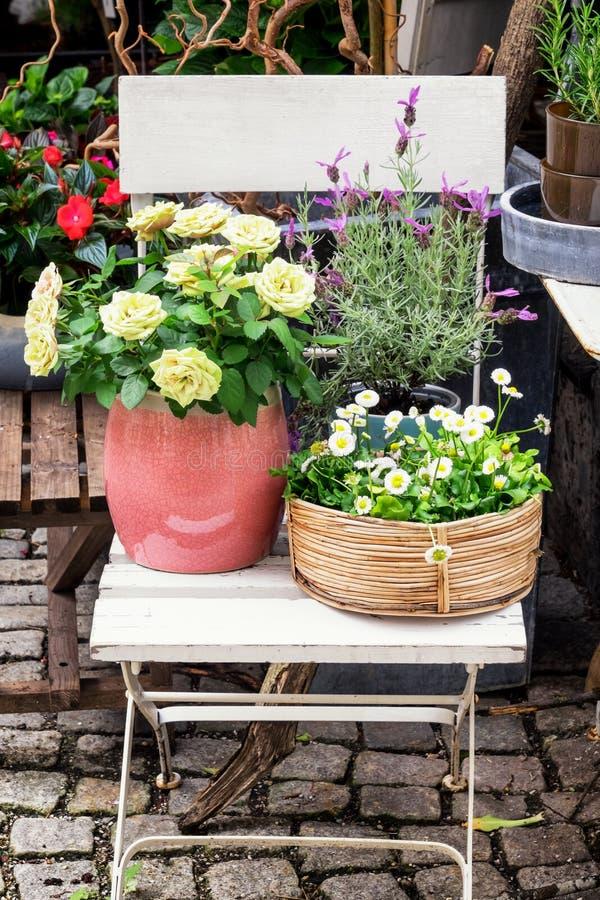 Cadeira e flores velhas imagens de stock royalty free
