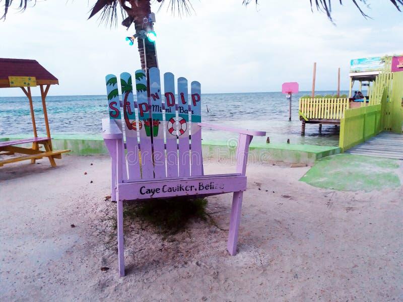 Cadeira grande imagem de stock royalty free