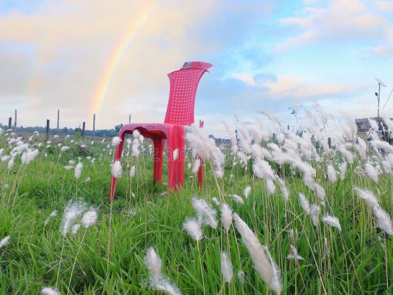 Cadeira que joga com vento fotografia de stock