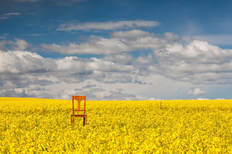 Cadeira só no campo vazio da violação fotografia de stock