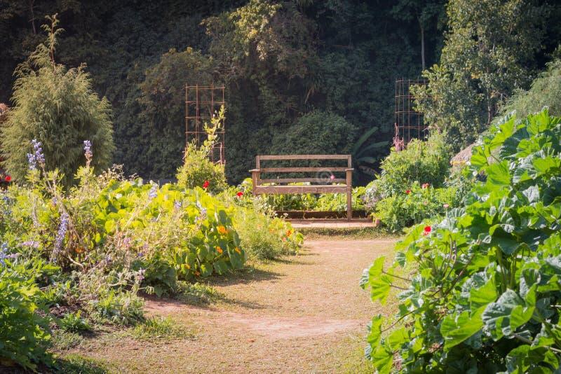 Cadeiras de madeira em jardins coloridos imagem de stock