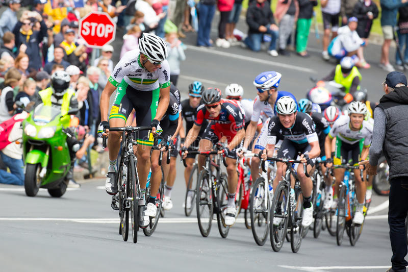 Cadel Evans Great Ocean Road Race royaltyfri foto