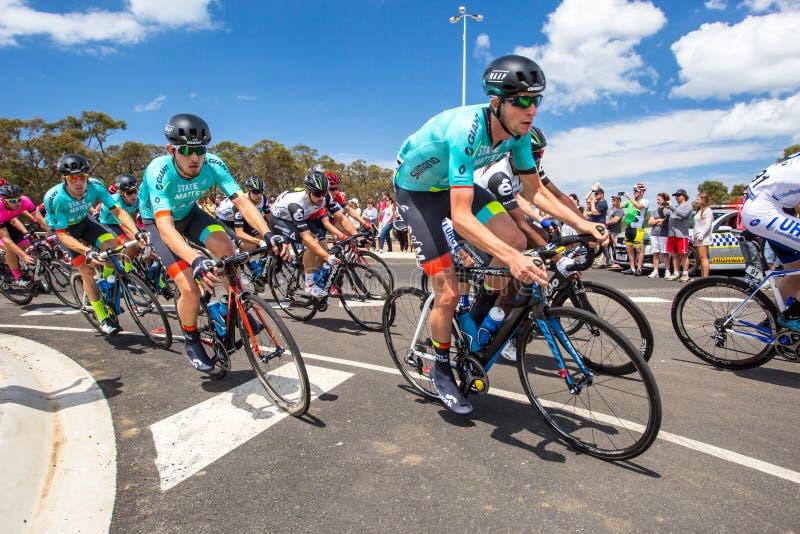 Cadel Evans Great Ocean Road Race - die Auslese der Männer stockbilder