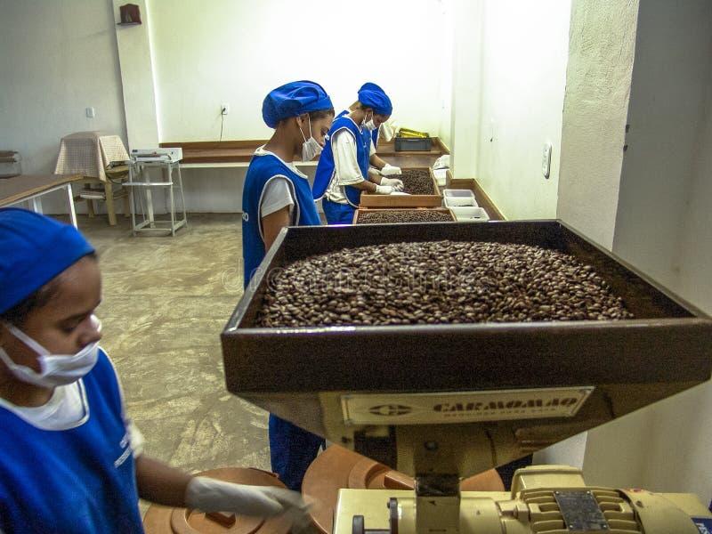 Cadena de producción del tostador de café de la granja en Mococa imagenes de archivo