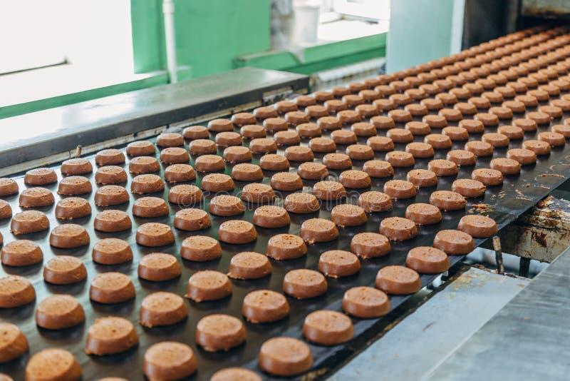 Cadena de producción de la hornada Galletas crudas crudas después de formar ir al horno por el transportador imagenes de archivo