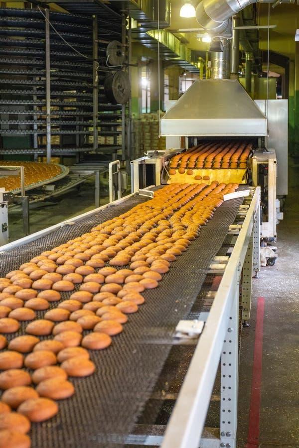 Cadena de producción de las galletas de la hornada Galletas en la banda transportadora en la fábrica de la confitería, industria  foto de archivo libre de regalías