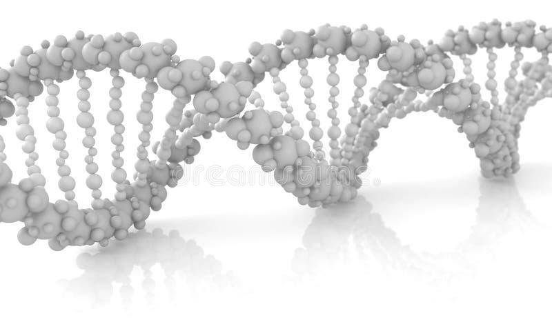 Cadena diagonal de la DNA contra el fondo blanco, imagen conceptual stock de ilustración