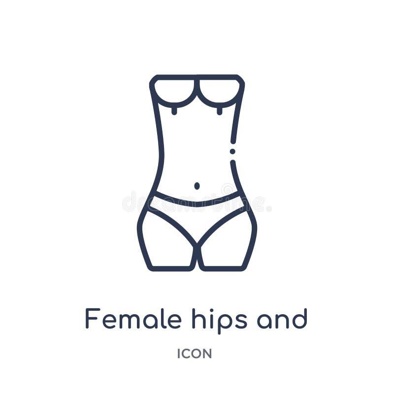 Caderas e icono femeninos lineares de la cintura de la colección humana del esquema de las partes del cuerpo Línea fina caderas f libre illustration