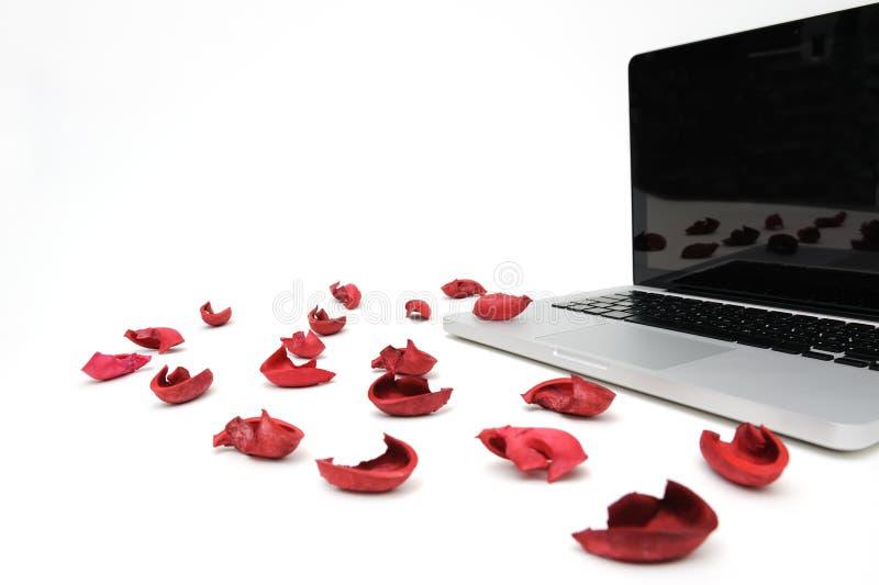 Caderno com a pétala vermelha da flor exótica imagem de stock