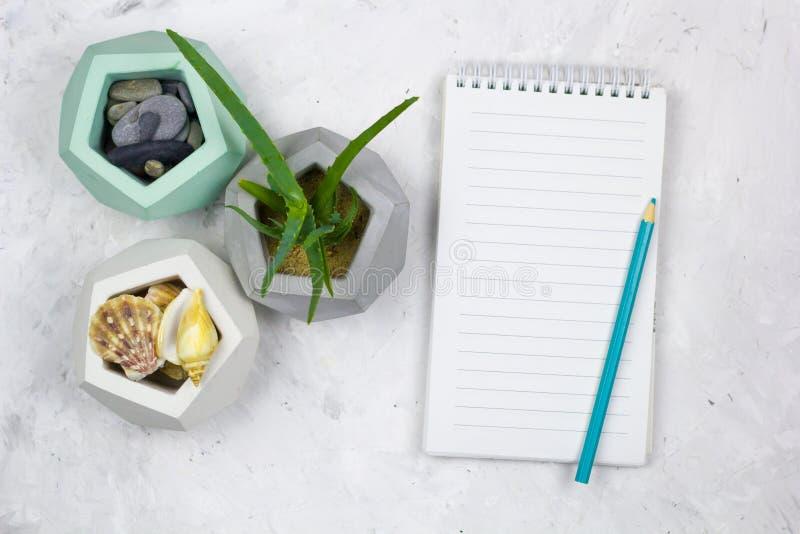 Caderno da vista superior com folha, aloés vera e shell vazios do mar imagem de stock