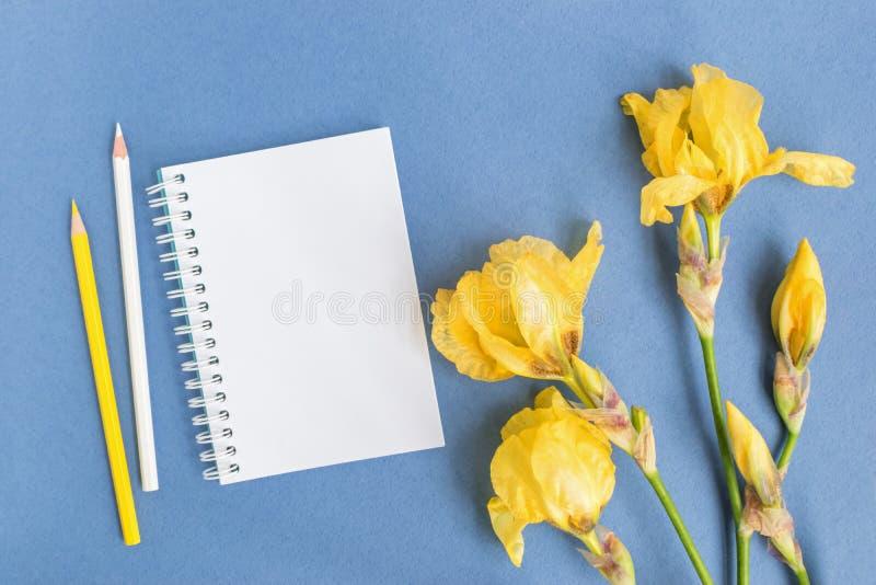 Caderno do modelo com flor da ?ris imagens de stock royalty free